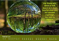 Wunderbare Waldkugeln (Wandkalender 2019 DIN A2 quer) - Produktdetailbild 2