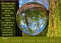 Wunderbare Waldkugeln (Wandkalender 2019 DIN A2 quer) - Produktdetailbild 5