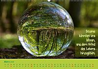 Wunderbare Waldkugeln (Wandkalender 2019 DIN A2 quer) - Produktdetailbild 3