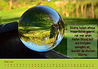 Wunderbare Waldkugeln (Wandkalender 2019 DIN A2 quer) - Produktdetailbild 6