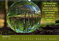 Wunderbare Waldkugeln (Wandkalender 2019 DIN A3 quer) - Produktdetailbild 2