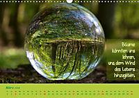 Wunderbare Waldkugeln (Wandkalender 2019 DIN A3 quer) - Produktdetailbild 3