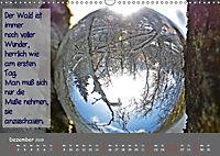 Wunderbare Waldkugeln (Wandkalender 2019 DIN A3 quer) - Produktdetailbild 12