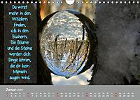Wunderbare Waldkugeln (Wandkalender 2019 DIN A4 quer) - Produktdetailbild 1