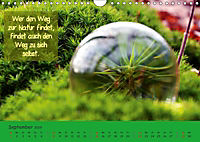 Wunderbare Waldkugeln (Wandkalender 2019 DIN A4 quer) - Produktdetailbild 9