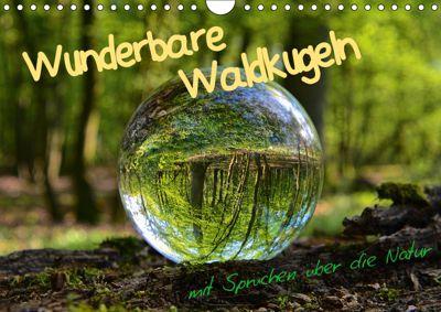Wunderbare Waldkugeln (Wandkalender 2019 DIN A4 quer), Ilona Stark-Hahn