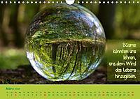 Wunderbare Waldkugeln (Wandkalender 2019 DIN A4 quer) - Produktdetailbild 3
