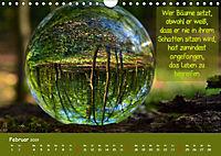 Wunderbare Waldkugeln (Wandkalender 2019 DIN A4 quer) - Produktdetailbild 2