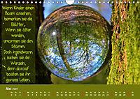 Wunderbare Waldkugeln (Wandkalender 2019 DIN A4 quer) - Produktdetailbild 5