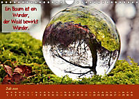 Wunderbare Waldkugeln (Wandkalender 2019 DIN A4 quer) - Produktdetailbild 7
