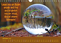 Wunderbare Waldkugeln (Wandkalender 2019 DIN A4 quer) - Produktdetailbild 10