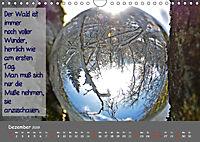 Wunderbare Waldkugeln (Wandkalender 2019 DIN A4 quer) - Produktdetailbild 12
