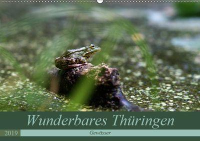 Wunderbares Thüringen - Gewässer (Wandkalender 2019 DIN A2 quer), k.A. flori0