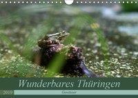 Wunderbares Thüringen - Gewässer (Wandkalender 2019 DIN A4 quer), k.A. Flori0