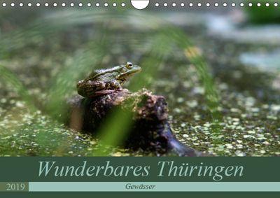 Wunderbares Thüringen - Gewässer (Wandkalender 2019 DIN A4 quer), Flori0