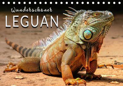 Wunderschöner Leguan (Tischkalender 2019 DIN A5 quer), Peter Roder