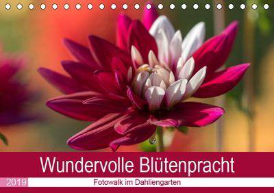 Wundervolle Blütenpracht - Fotowalk im Dahliengarten (Tischkalender 2019 DIN A5 quer), André Teßen