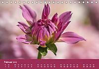 Wundervolle Blütenpracht - Fotowalk im Dahliengarten (Tischkalender 2019 DIN A5 quer) - Produktdetailbild 2