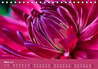 Wundervolle Blütenpracht - Fotowalk im Dahliengarten (Tischkalender 2019 DIN A5 quer) - Produktdetailbild 3