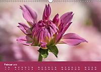 Wundervolle Blütenpracht - Fotowalk im Dahliengarten (Wandkalender 2019 DIN A3 quer) - Produktdetailbild 2