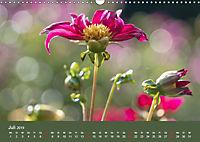 Wundervolle Blütenpracht - Fotowalk im Dahliengarten (Wandkalender 2019 DIN A3 quer) - Produktdetailbild 7