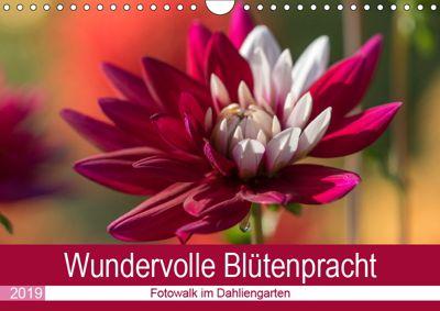 Wundervolle Blütenpracht - Fotowalk im Dahliengarten (Wandkalender 2019 DIN A4 quer), André Teßen