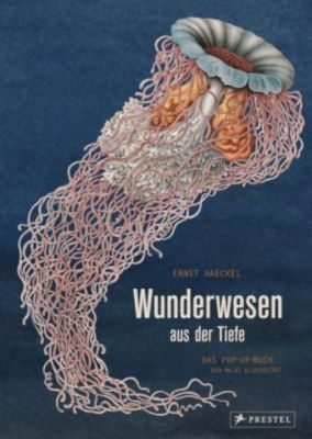 Wunderwesen aus der Tiefe, Ernst Haeckel, Maike Biederstädt