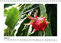 XIN CHÀO VIETNAM (Wall Calendar 2019 DIN A4 Landscape) - Produktdetailbild 6