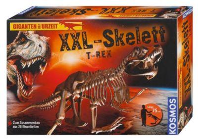 XXL-Skelett Tyrannosaurus Rex (Experimentierkasten)
