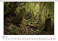 Yakushima - Japans Weltnaturerbe (Wandkalender 2019 DIN A4 quer) - Produktdetailbild 7