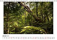 Yakushima - Japans Weltnaturerbe (Wandkalender 2019 DIN A4 quer) - Produktdetailbild 1