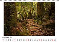 Yakushima - Japans Weltnaturerbe (Wandkalender 2019 DIN A3 quer) - Produktdetailbild 9