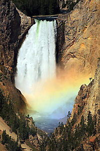 Yellowstone - Produktdetailbild 4