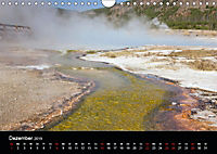 Yellowstone Impressionen (Wandkalender 2019 DIN A4 quer) - Produktdetailbild 12