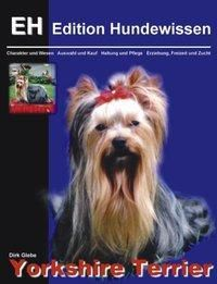 Yorkshire Terrier, Dirk Glebe