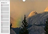 Yosemite perspectives (Wall Calendar 2019 DIN A4 Landscape) - Produktdetailbild 1