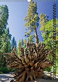 YOSEMITE VALLEY Natur Pur (Wandkalender 2019 DIN A3 hoch) - Produktdetailbild 4