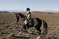 Zaina - Königin der Pferde - Produktdetailbild 1
