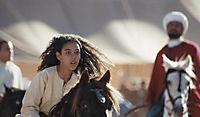 Zaina - Königin der Pferde - Produktdetailbild 4