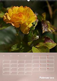 Zarte Schönheiten - Rosen (Wandkalender 2019 DIN A2 hoch) - Produktdetailbild 2