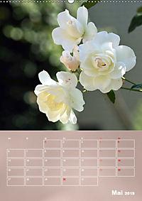 Zarte Schönheiten - Rosen (Wandkalender 2019 DIN A2 hoch) - Produktdetailbild 5