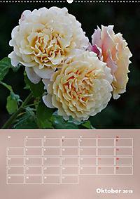 Zarte Schönheiten - Rosen (Wandkalender 2019 DIN A2 hoch) - Produktdetailbild 10