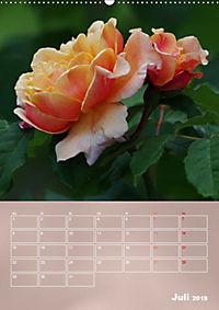 Zarte Schönheiten - Rosen (Wandkalender 2019 DIN A2 hoch) - Produktdetailbild 7