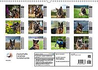 Zauberhafte Langhaar Schäferhunde (Wandkalender 2019 DIN A3 quer) - Produktdetailbild 13