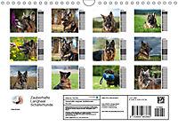Zauberhafte Langhaar Schäferhunde (Wandkalender 2019 DIN A4 quer) - Produktdetailbild 13