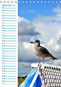 Zauberhafte Schleilandschaft (Tischkalender 2019 DIN A5 hoch) - Produktdetailbild 12