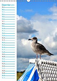 Zauberhafte Schleilandschaft (Wandkalender 2019 DIN A3 hoch) - Produktdetailbild 12