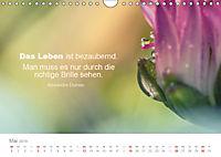 Zauberhafte Sprüche - Bunte Seelenblüten (Wandkalender 2019 DIN A4 quer) - Produktdetailbild 5