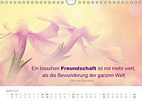 Zauberhafte Sprüche - Bunte Seelenblüten (Wandkalender 2019 DIN A4 quer) - Produktdetailbild 6