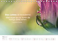 Zauberhafte Sprüche - Bunte Seelenblüten (Tischkalender 2019 DIN A5 quer) - Produktdetailbild 5